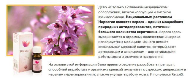 Природные антидепрессанты - список натуральных растительных препаратов от депрессии
