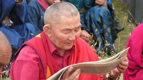 Лечение заболеваний крови методами тибетской медицины