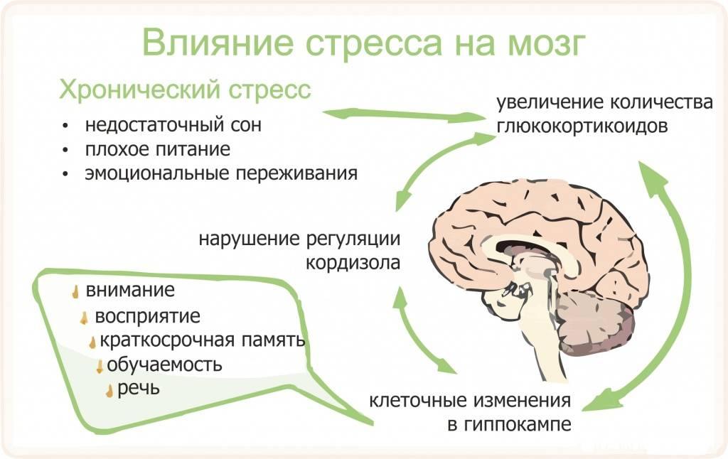 Как лечить депрессию при гипотиреозе | выбор за тобой